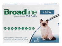 猫用ブロードライン・スポットオン