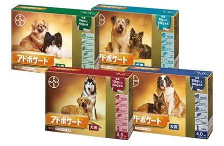 犬の駆虫薬「アドボケート犬用」