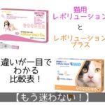 ノミダニフィラリア予防薬「レボリューション猫用」「レボリューションプラス猫用」の違いを比較表で解説