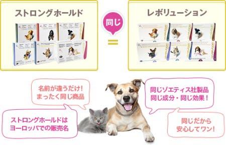 犬猫ノミダニフィラリア駆虫薬のレボリューションとストロングホールドは同じ