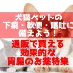 通販で買える犬猫ペットのお薬(下痢、軟便、嘔吐、胃腸トラブルに)